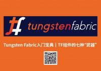 "Tungsten Fabric入门宝典丨TF组件的七种""武器"""