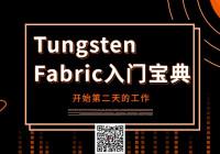 Tungsten Fabric入门宝典丨开始第二天的工作
